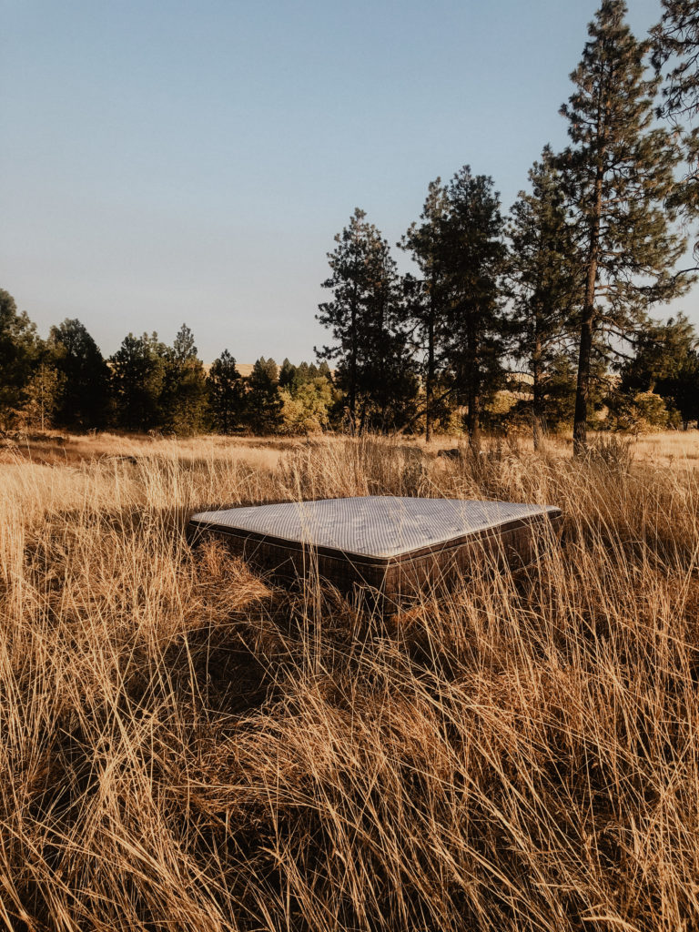 A Wallaroo's Cool Mattress floats serenely in a PNW Wheat Field.